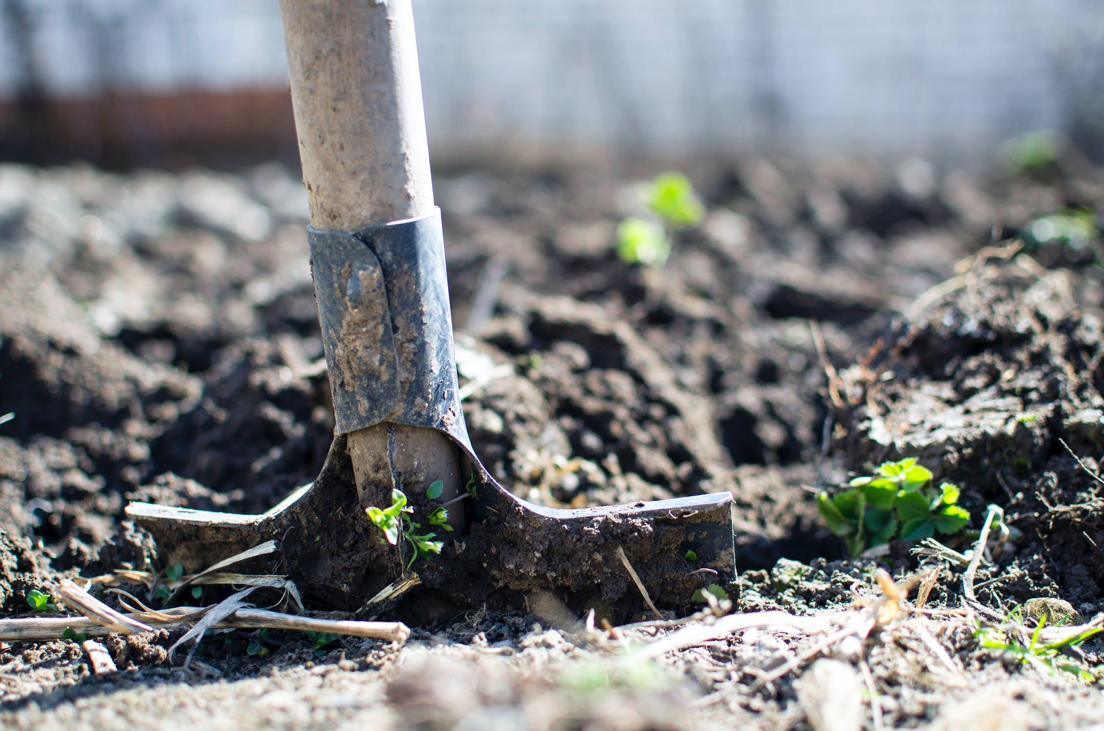 Tips voor verbouwen achtertuin